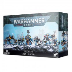 Chasseurs Gris - Space Wolves